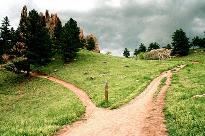 35 Garden Paths That Take Joy in the Journey